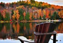Autumn! / by Katelyn L