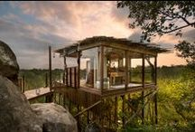 Luxury Safari Treehouses / For some, a Safari in Africa is not complete without sleeping under the stars, hearing the call of the wild, and feeling the warm breezes blowing. Sleep-out decks and treehouses make this a reality...