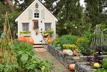 cottages, studios, sheds, greenhouses / guest houses, casitas, granny flats, efficiency & accessory units,  art studios, conservatories, chicken coops, tiny houses, green houses, play houses, small space living / by Penny Houle