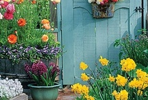 outdoor spaces, gardening, landscaping / landscape, gardens and container gardening