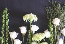 Flowers / by Maria Backlund