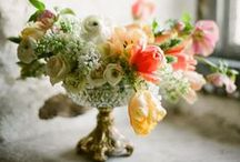 Dishes & Flowers / dishes, flowers, and milk glass OH MY / by Britt Leigh