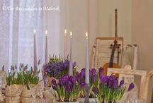 Pretty Tablescapes / by Carolyn Aiken