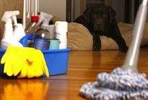 Dicas e truques de Limpeza e organização / Limpeza de casa e soluções infalíveis!