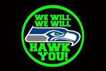 My HAWKS!!!! / by Sue Wilson