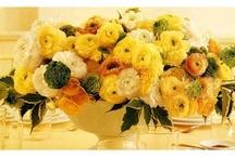 Ranunculus weddings