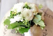 WEDDING BOUQUETS / by Valerie Siggson