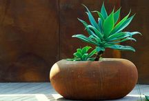 Pots and planters / Containers and pots / by Shelley Hugh-Jones