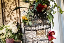 Decoratives cages inspiration