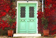 - DOOR COLOR -