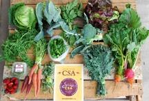 Farmhouse Delivery CSA / Farm-fresh produce from the farm to the table.