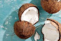 - GOCOCONUT - / Bikini, cocktail, cocosnut, white beaches, palmtrees, deep/light blue seas, exotic Flora and Fauna style..