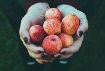 Fall / fall, autumn, decor, recipes, fashion, ideas, photography