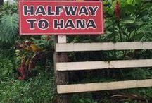Maui / travel