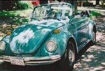 VW obsessed