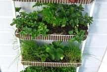 Sustainable growing