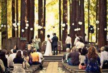 Wedding. / by Erica Garcia