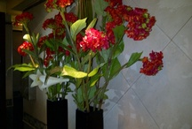 La Vicente López / http://lavicentelopez.com.ar/ Las flores, los malvones, linda decoración para un baño oscuro sin ventilación.