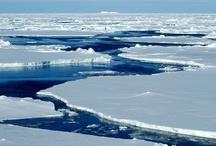 "Endangered - Arctic / As Arctic sea ice hits a record low, scientific focus is turning to climate ""tipping points"" - a threshold that, once crossed, cannot be reversed and will create fundamental changes to other areas - http://bit.ly/R64T4g"