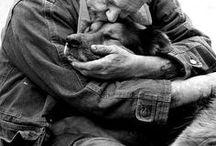 Nobody loves you like a dog