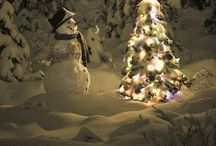 I love snowman! / by Heidi Butler