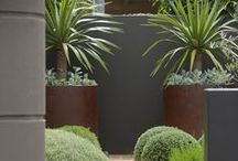 KA_Roof Deck / Garden / Ideas for potted plants, etc.