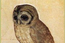 I so love owls!