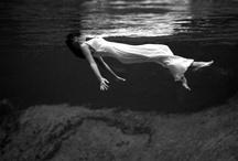 a r t | p h o t o g r a p h y · / by Lorraine Bogaards