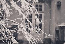 Christmas Ideas / by Donna Martinez-Claras