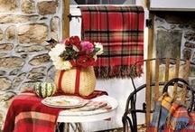 Farmhouse Cottage Winter Decor