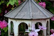 Garden: Birdhouses & Baths