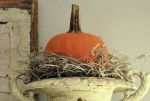 autumn / by Mallory Klein