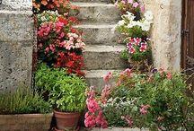 Mazatlan....stairway to heaven
