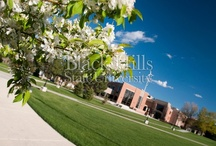 Campus / by Blacks Hills State University