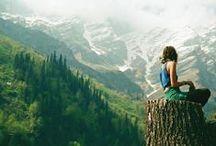 Travel - Green World