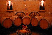 Our winery Pierino Vellano / Our winery Pierino Vellano