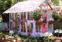 Lady Butterbug Garden