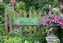 Gardening / by Wanda Turner