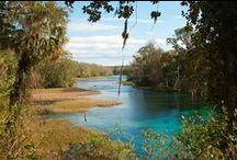 Springs & Grottos / Beautiful water holes with emphasis on natural springs. / by Linda Chellew