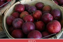 Sensational Color | Red / by Kate | Sensational Color