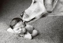 Kid Photography / by Christy Meredith