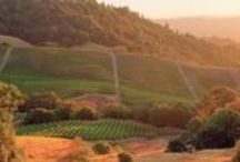 Travel Trade / by Sonoma County
