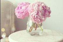 Flowers in Vases / Flowers add life to your home. I love to always have fresh cut flowers in every room.