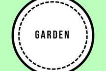 Garden / Garden ideas, vegetable gardens, outdoors