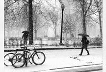 Snowstorm Janus / Pictures of Philly in the snow! / by Philadelphia Magazine