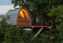 Tree Houses / In my dreams. / by Gayle Alstrom