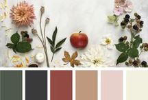 Fall Home + Color Trends / Color Palettes inspired by fall