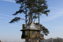 Tree huts are cool