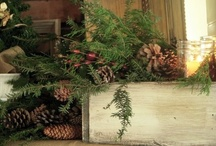 Christmas Decorating Ideas / by Laurie Bohannan