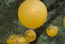Yellow Sunshine / by Kathleen Lupole